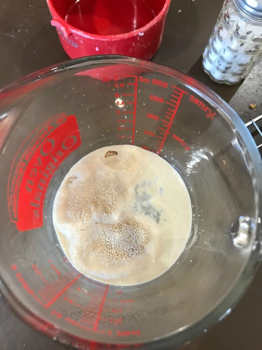 Yeast rising in measuring cup