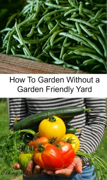 Gardening without a garden friendly yard-it is possible to garden, even it you don't think you have the room
