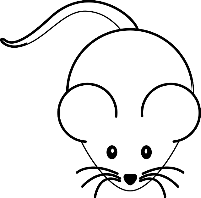 mouse-303588_640