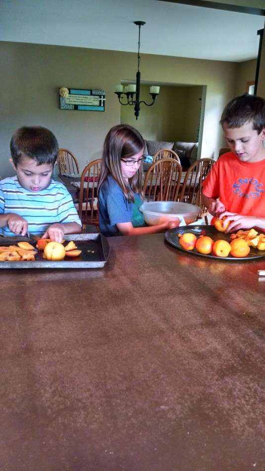 Fresh Fruit Peaches Kids Helping In Kitchen