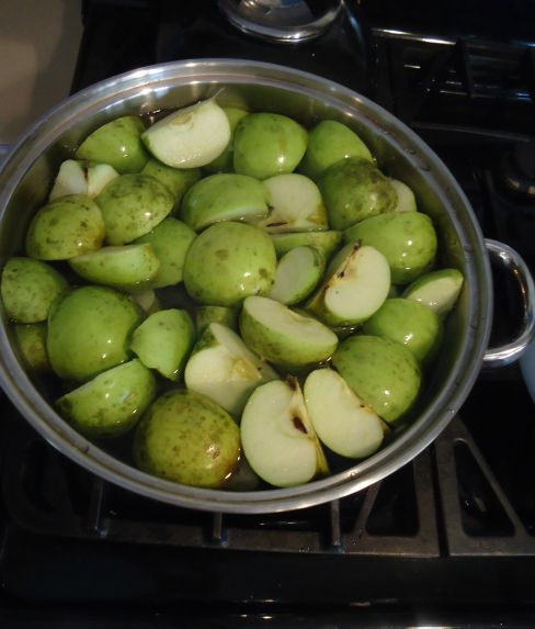 apples sitting in a pot of water, waiting to be boiled.