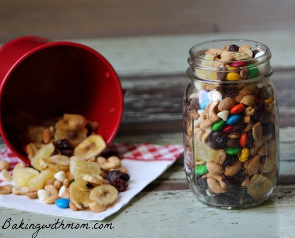 Homemade Trail Mix for on the go with chocolate, raisins and peanuts