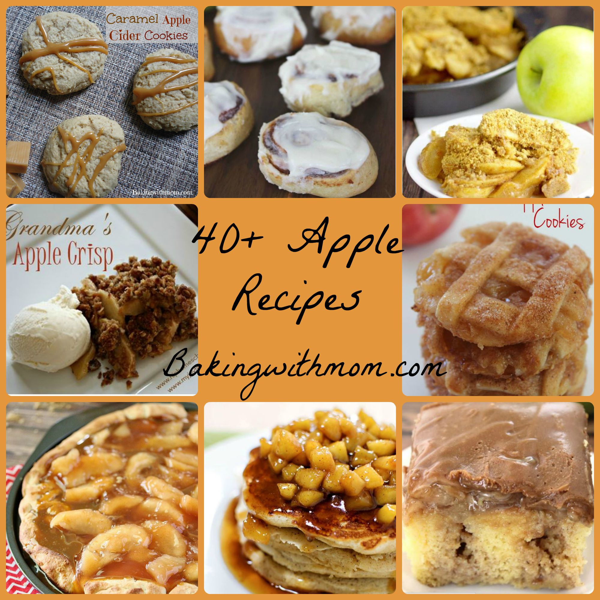 40+ Apple Recipes