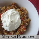Mexican Hamburger And Rice is a delicious spicy meal with a wonderful blend of flavors.