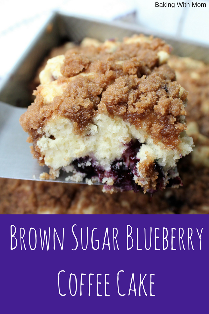 Brown Sugar Blueberry Coffee Cake a breakfast recipe with cinnamon, brown sugar and blueberries