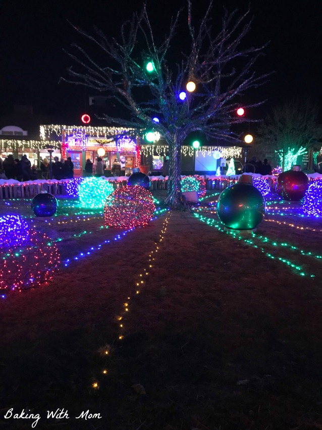 St. Louis Wild Lights Display