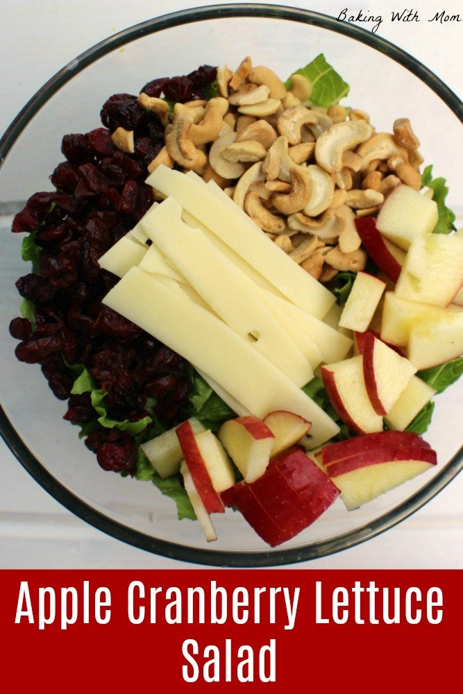 Apple Cranberry Lettuce Salad in a clear bowl with cheese, apples and cranberries