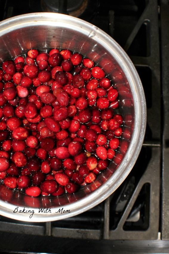 Cranberries in a pot of water