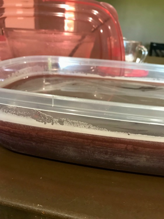 Cranberry Slush mix in a plastic container