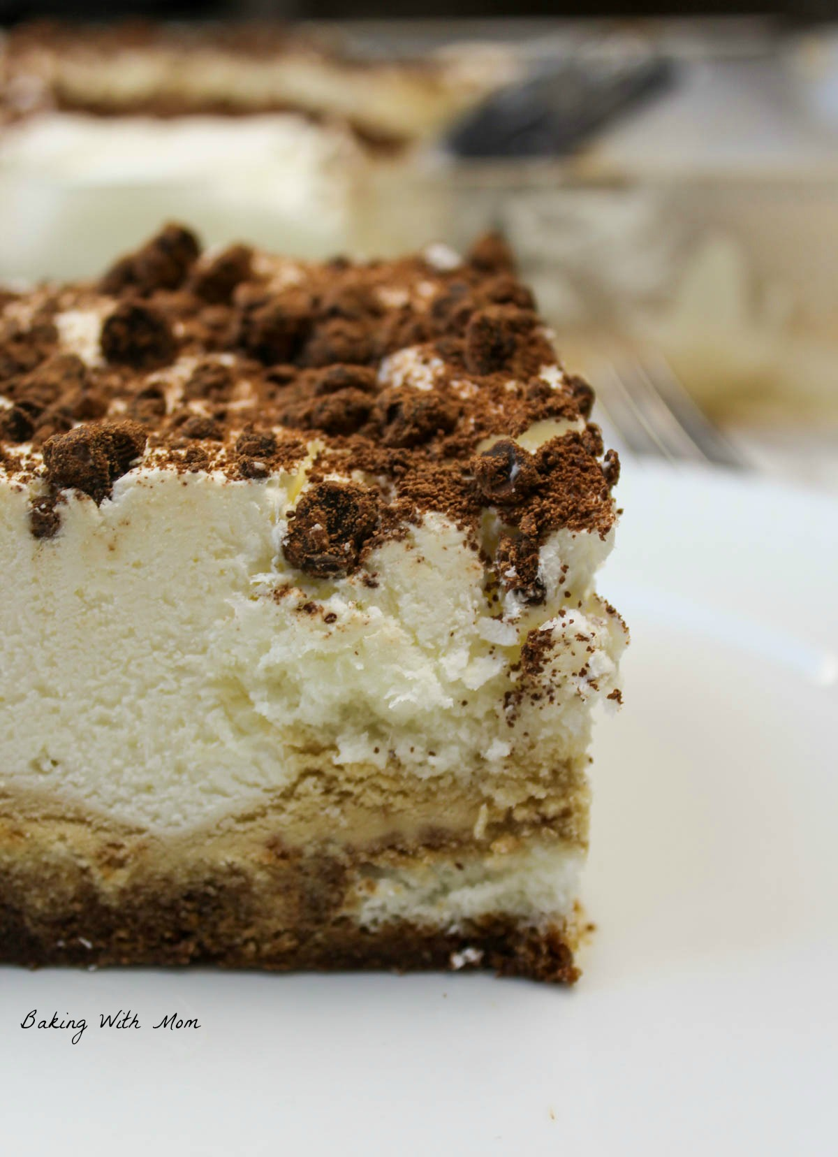Slice of tiramisu ice cream cake on a white plate with sprinkles of chocolate chips