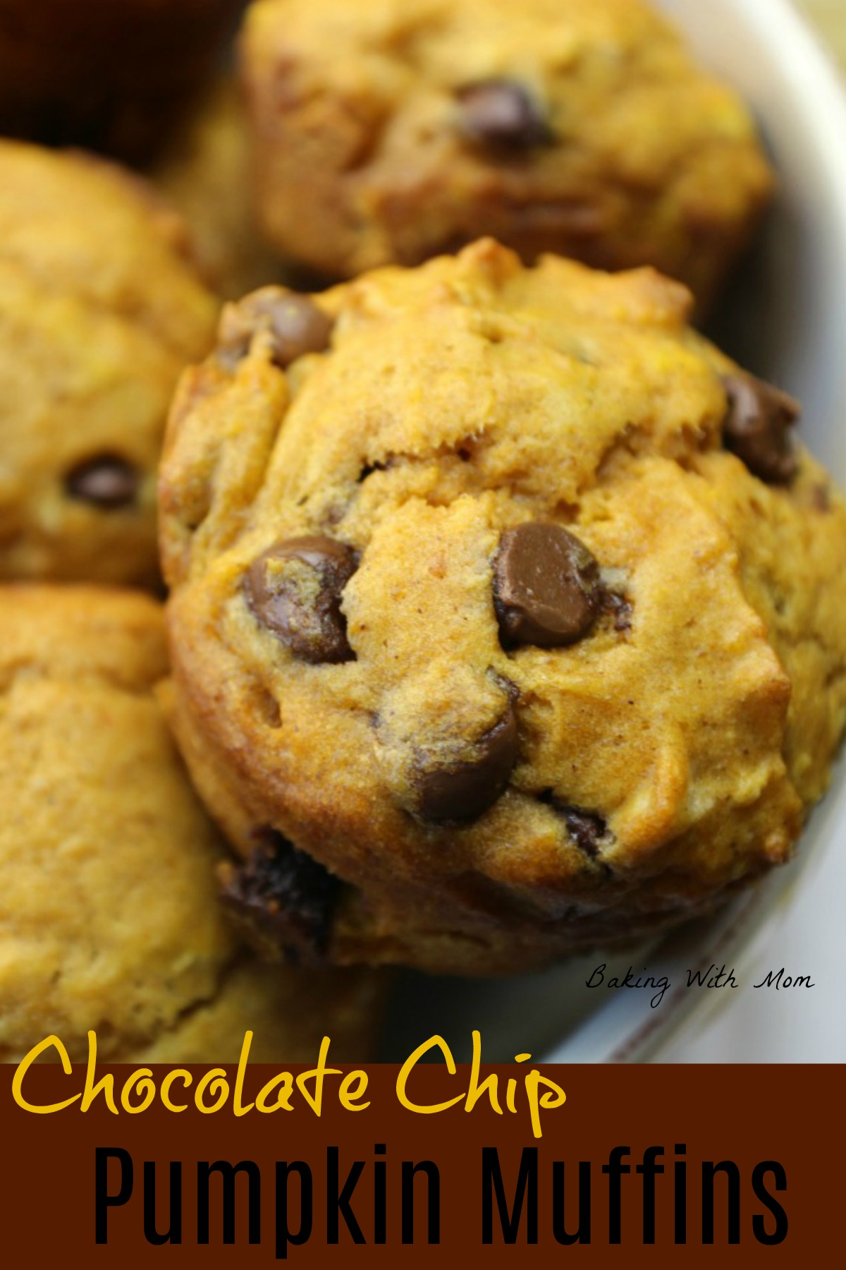 Chocolate chip pumpkin muffins in a white bowl